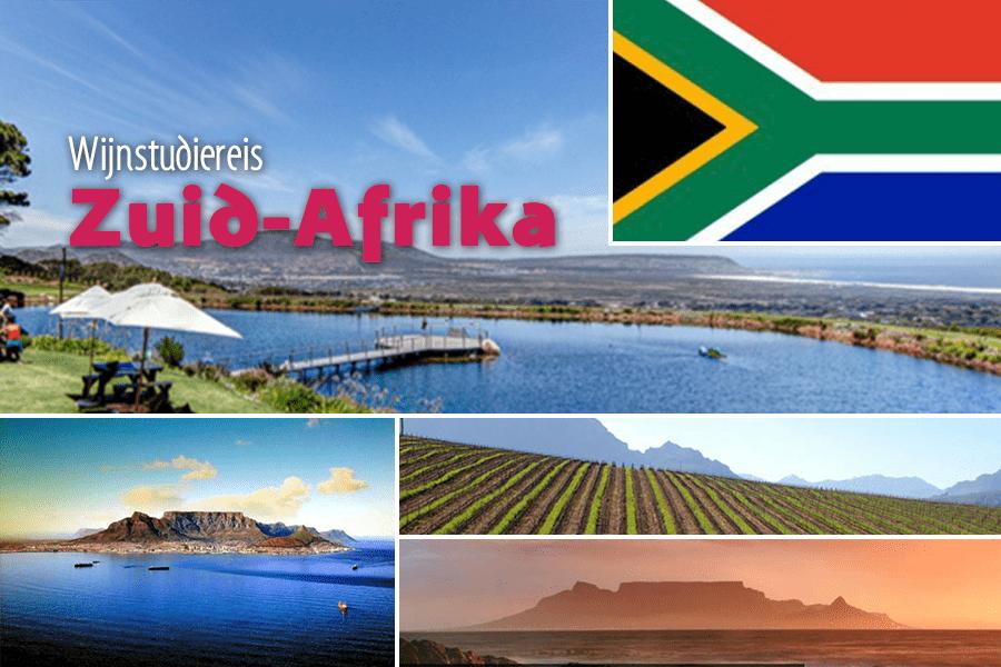 Wijnstudiereis Zuid-Afrika