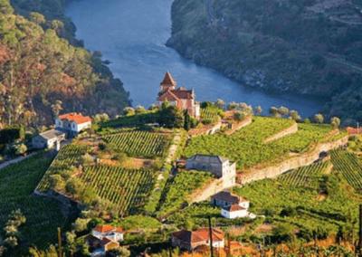 Spectaculair Douro, Dão en Bairrada in 5 dagen!