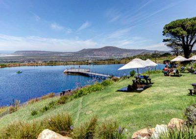 Professionele wijnstudiereis Zuid-Afrika 2017